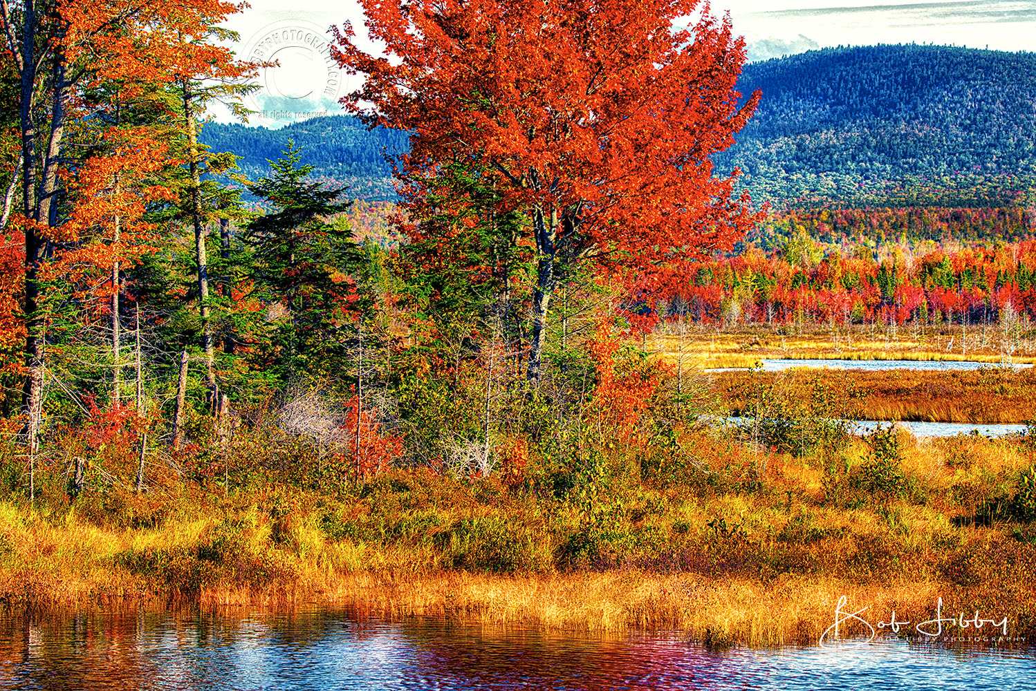 Fall in Maine