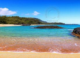 Hawaii - Beach Scenel