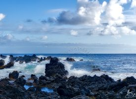Hawaiian Seascape Lava Rocks