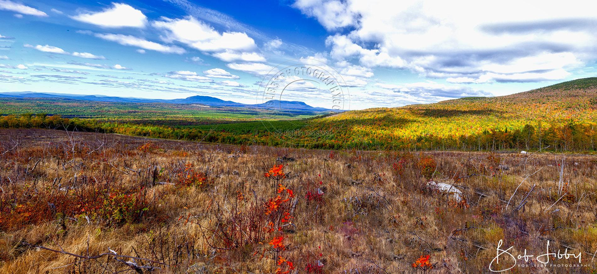 Maine Fall Landscape