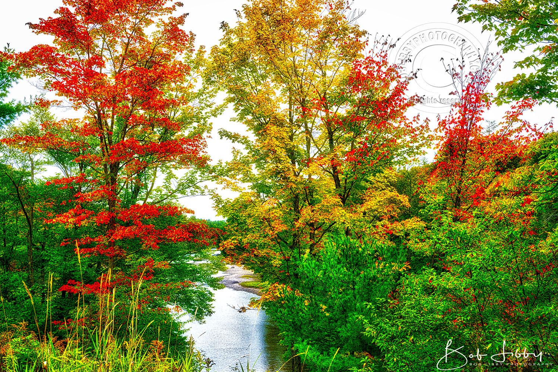 Maine River Piscataquis