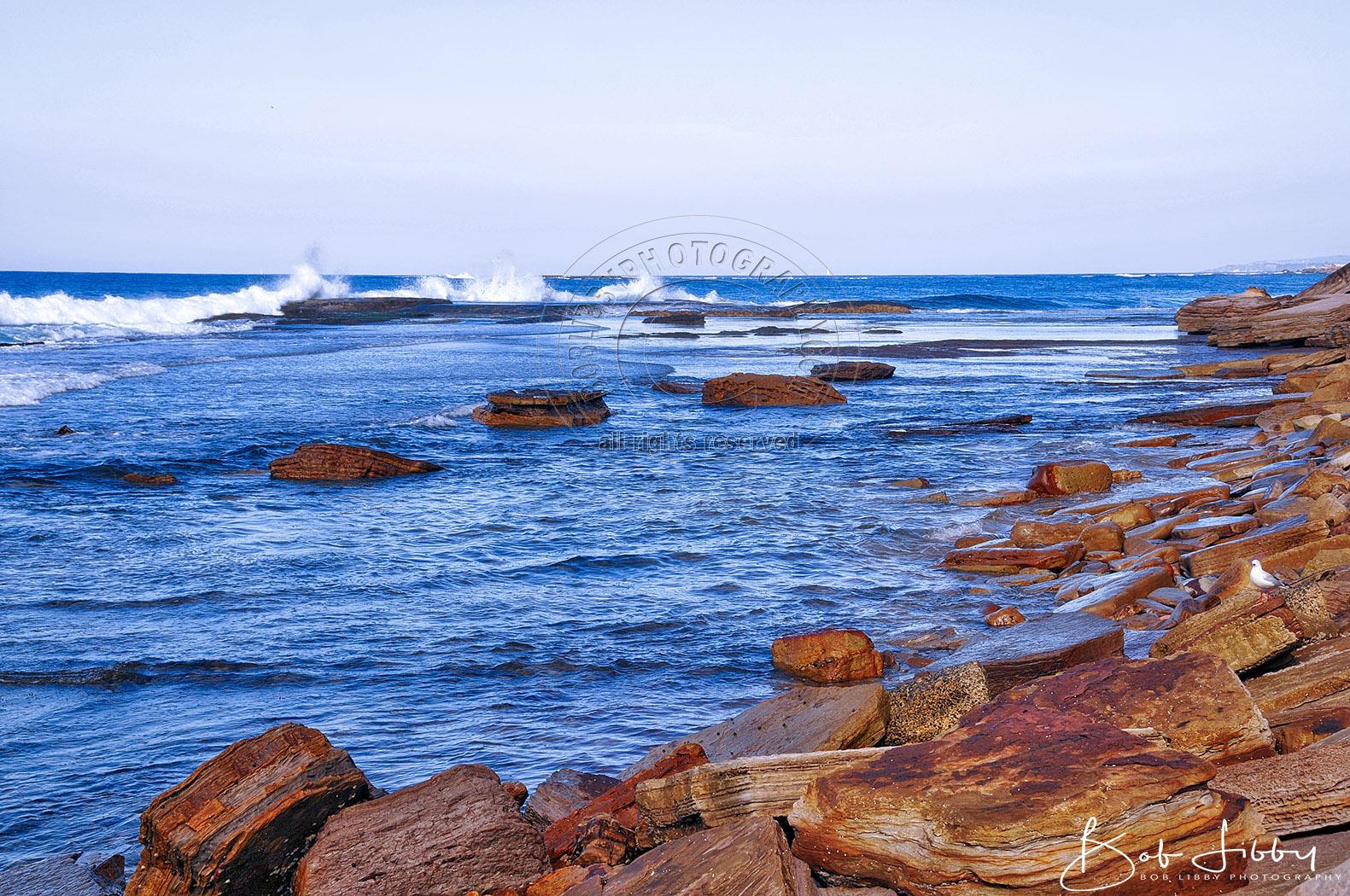 Sydney Coastline