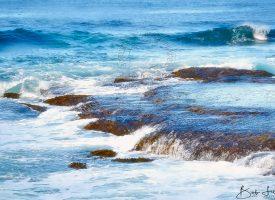 Whale Beach, Sydney Australia