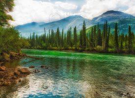 Alaska Highway Photo Stop