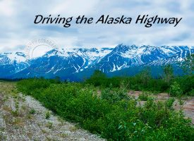 Driving the Alaska Highway